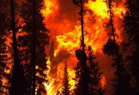 ПАМЯТКА по соблюдению правил пожарной безопасности
